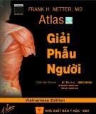 Atlas Giải phẫu người (2007): Phần 2