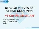 Báo cáo chuyên đề Vi sinh đại cương: Vi khuẩn Gram âm