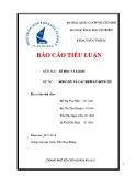 Báo cáo tiểu luận môn học: Số học và logic - Đồng dư và các định lý đồng dư