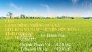 Bài thuyết trình: Thiết kế hệ thống tưới-tiêu nước cho cánh đồng trồng lúa xã Hòa Khánh Nam, huyện Đức Hòa, tỉnh Long An quy mô 575 ha