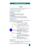 Lý thuyết về nhôm và hợp chất