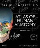 Ebook Atlas of human anatomy (6th edition): Part 1