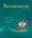 Ebook Biochemistry (5th edition): Part 1