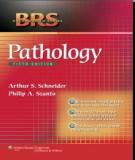 BRS Pathology (4th edition) : Part 2