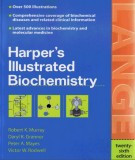 Ebook Harper's illustrated biochemistry (26th edition): Part 1