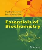 Ebook Essentials of biochemistry: Part 2