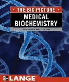 Ebook The big picture: Medical biochemistry: Par 2