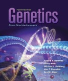 Ebook Genetics from genes to genomes: Part 1