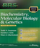 Ebook BRS Biochemistry, molecular biology and genetics (5th edition): Part 1
