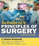 Ebook Schwartz's principles of surgery (10th edition): Part 1
