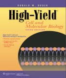 Ebook High-Yield cell and molecular biology - Cell and molecular biology (3rd edition): Part 1