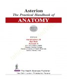 Ebook Asterion the practical handbook of anatomy (2nd edition): Part 2