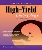 Ebook High-yield embryology (5th edition): Part 1