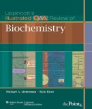 Lippincott's illustrated Q& A review of biochemistry: Part 1