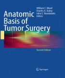 Ebook Anatomic basis of tumor surgery (2nd edition): Part 1