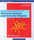 Ebook Color atlas and textbook of human anatomy Vol.3 - Nervous system and sensory organs (5th edition): Part 2