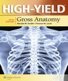 Ebook High-Yield gross anatomy (5th edition): Part 2