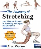 Ebook The anatomy of stretching (2nd edition): Part 2