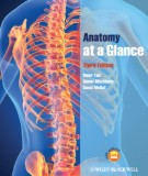 Ebook Anatomy at a glance (3rd edition): Part 1