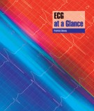 ECG at a Glance - Patrick Davey 2