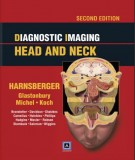Ebook Diagnostic imaging head and neck (2nd edition): Part 2
