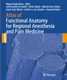 Ebook Atlas of functional anatomy for regional anesthesia and pain medicine human structure: Part 2