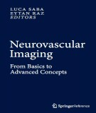 Ebook Neurovascular imaging - From basics to advanced concepts: Part 1