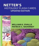 Ebook Netter's histology flash cards (updated edition): Part 2