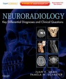 Ebook Neuroradiology - Key differential diagnoses and clinical questions: Part 1