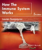 Ebook How the immune system works (5th edition): Part 2