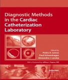 Ebook Diagnostic methods in the cardiac catheterization laboratory: Part 1