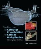 Ebook The practice of catheter cryoablation for cardiac arrhythmias: Part 1