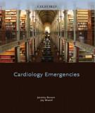 Ebook Cardiology emergencies: Part 2