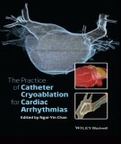 Ebook The practice of catheter cryoablation for cardiac arrhythmias: Part 2