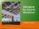 Lecture Management: Leading and collaborating in a competitive world (10/e) – Chapter 11