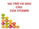 Bài giảng Nhu cầu và vai trò của Vitamin