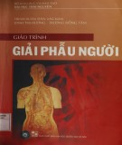 Giáo trình Giải phẫu người: Phần 2 - Trịnh Xuân Đàn (chủ biên)