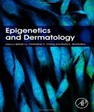 Ebook Epigenetics and dermatology: Part 2