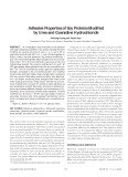 Adhesive Properties of Soy Proteins Modified by Urea and Guanidine Hydrochloride