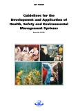 Guidelines for the Development and Application of Health, Safety and Environmental Management Systems