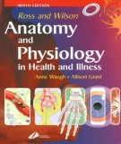 Ebook Anatomy and physiology in health and illness: Part 1
