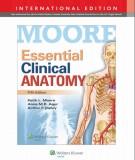 Ebook Essential clinical anatomy (5th edition): Part 2