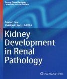 Ebook Kidney development in renal pathology: Part 2