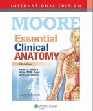 Ebook Essential clinical anatomy (5th edition): Part 1