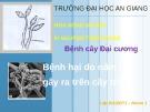 Bài thuyết trình Bệnh cây đại cương: Bệnh hại do nấm gây ra trên cây trồng