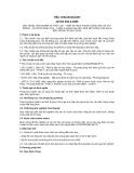 Tiêu chuẩn ngành 10 TCN 919-3:2006