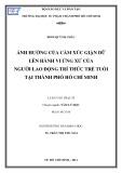 Luận văn Thạc sĩ Tâm lý học: Ảnh hưởng của cảm xúc giận dữ lên hành vi ứng xử của người lao động trí thức trẻ tuổi tại thành phố Hồ Chí Minh