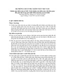 Hệ thống chuẩn mực kiểm toán Việt Nam - Chuẩn mực kiểm toán số 240: Trách nhiệm của kiểm toán viên liên quan đến gian lận trong quá trình kiểm toán báo cáo tài chính