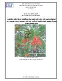 Báo cáo tổng kết đề tài NCKH cấp trường: Nghiên cứu tăng trưởng của loài cây tóc đỏ (Lumnitzera Littorea (Jack) Voigt) với các chế độ muối khác nhau ở giai đoạn vườn ươm