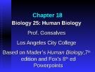 Lecture Biology 25 (Human Biology): Chapter 18 - Prof. Gonsalves